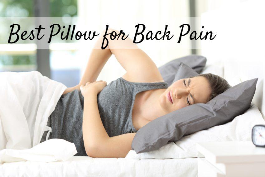 Best Pillow for Back Pain 2020   SleepingCulture.com