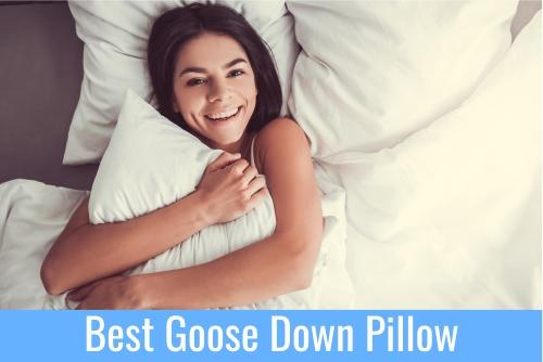 Best Goose Down Pillow big