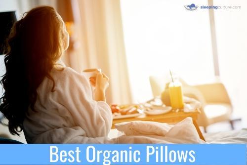Best Organic Pillows For Sleep