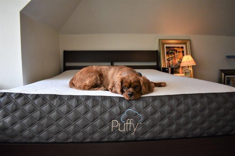 puffy mattress
